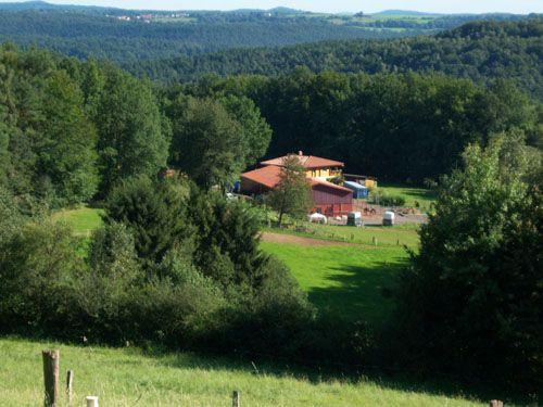 Ferienwohnung Altwiese - Pferdehof im Pfälzerwald