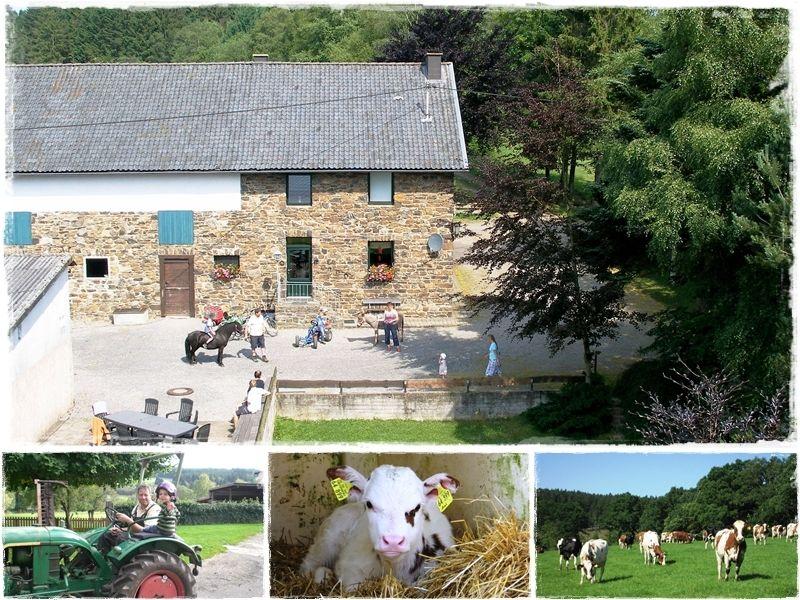 Vennhof - ****vakantie bij vrienden op en boerderij