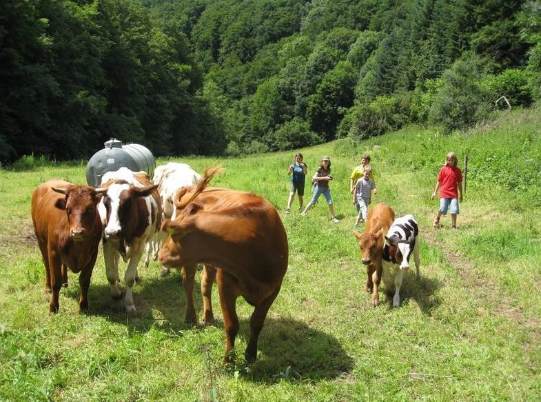 Nengshof - Abenteuer Natur in der Eifel